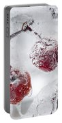 Icy Branch With Crab Apples Portable Battery Charger
