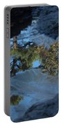 Icy Evergreen Reflection Portable Battery Charger