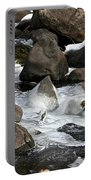 Icy Rapids Portable Battery Charger