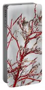 Icy Red Dogwood Portable Battery Charger