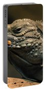 Iguana-7374 Portable Battery Charger