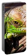 Iguana On The Deck At Mammacitas Portable Battery Charger