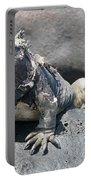 Iguana Or Prehistory Survivor Portable Battery Charger