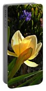 Illuminated Daffodil Portable Battery Charger