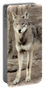 Illusion Of A Wolf Portable Battery Charger