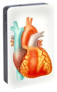 Illustration Of The Human Heart Portable Battery Charger
