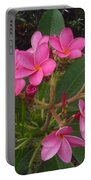 Immaculate Pink Plumerias Portable Battery Charger