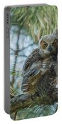 Immature Great Horned Owls Portable Battery Charger