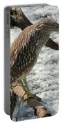 Immature Night Heron Portable Battery Charger