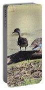 Immature Wood Ducks Portable Battery Charger