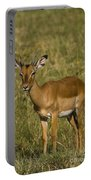 Impala Female Portable Battery Charger