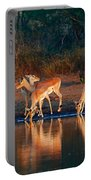 Impala Herd With Reflections In Water Portable Battery Charger