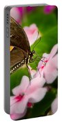 Impatient Swallowtail Portable Battery Charger