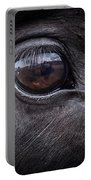 In A Horse's Eye Portable Battery Charger