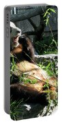 In Need Of More Sleep. Er Shun Giant Panda Series. Toronto Zoo Portable Battery Charger