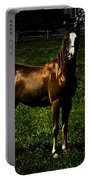 In The Corral 1 - Featured In Comfortable Art And Wildlife Groups Portable Battery Charger