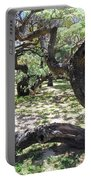 In The Depth Of Enchanting Forest V Portable Battery Charger