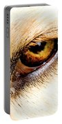 In The Eyes.... Portable Battery Charger