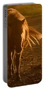 In The Golden Light Portable Battery Charger