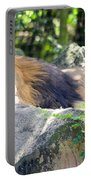 In The Jungle The Mighty Jungle Portable Battery Charger