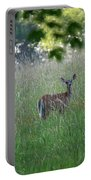 White-tailed Deer In Meadow  Portable Battery Charger