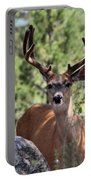 In The Shade Portable Battery Charger