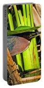 In The Shade Little Green Heron Portable Battery Charger