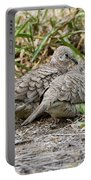 Inca Doves Portable Battery Charger