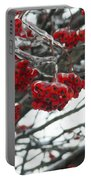 Incased Berries Portable Battery Charger