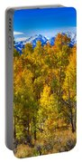 Independence Pass Autumn Colors Portable Battery Charger