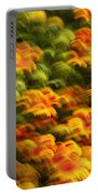 Indian Blanket Psychedelic Portable Battery Charger