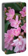 Indian Hawthorn Blossoms Portable Battery Charger
