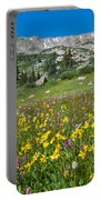Indian Peaks Wildflower Meadow Portable Battery Charger