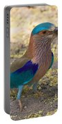 Indian Roller Portable Battery Charger