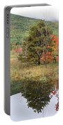 Indian Summer Acadia Park Portable Battery Charger