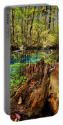 Indian Summer At Buford Spring Portable Battery Charger