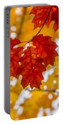 Indian Summer Trees Portable Battery Charger