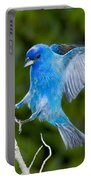 Indigo Bunting Alighting Portable Battery Charger