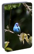 Indigo Bunting - Img-428-003 Portable Battery Charger