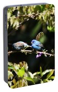 Indigo Bunting - Img 431-013 Portable Battery Charger