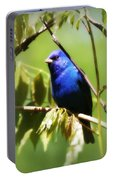 Indigo Bunting- Img_494-006 Portable Battery Charger