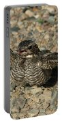 Industrial Nighthawk Portable Battery Charger