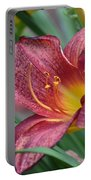 Inflamed - Lily Portable Battery Charger