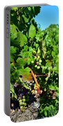 Inglenook Vineyard -10 Portable Battery Charger
