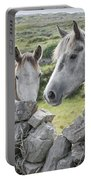 Inishmore Horses Portable Battery Charger