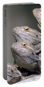 Inland Bearded Dragons Portable Battery Charger