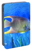 Into Blue - Tropical Fish By Sharon Cummings Portable Battery Charger
