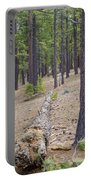 Into The Forest Portable Battery Charger