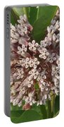 Into The Heart Of A Milkweed Flower Portable Battery Charger