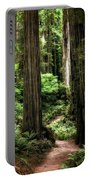 Into The Magical Forest Portable Battery Charger